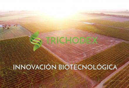 Vídeo presentación de la empresa de biotecnología Trichodex